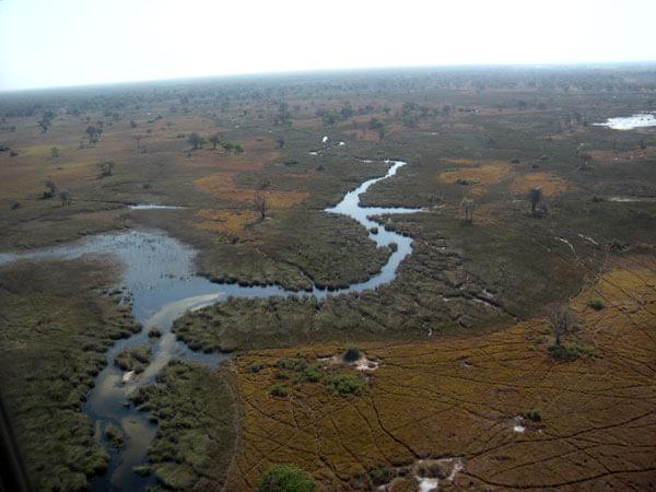 Aereo Okavango's Delta Chobe National Park
