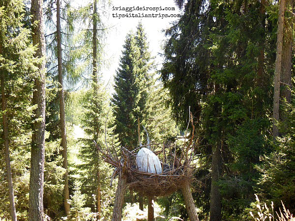 foresta-dei-draghi-ouvo