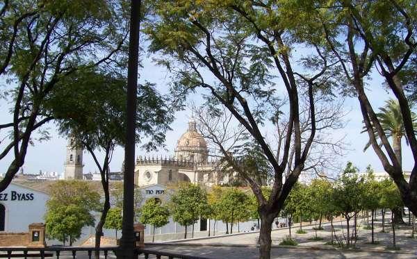 Jerez_cantina e cattedrale