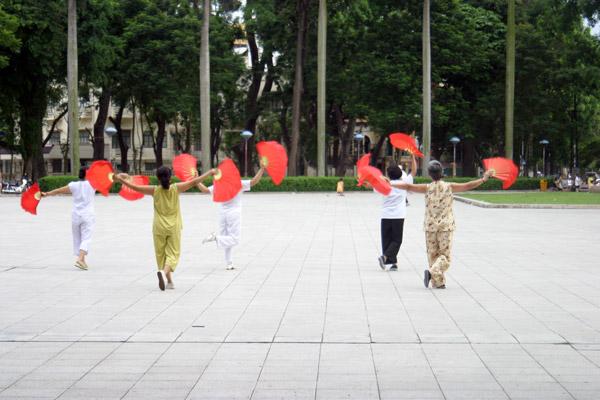 Vietnam Miprendoemiportovia