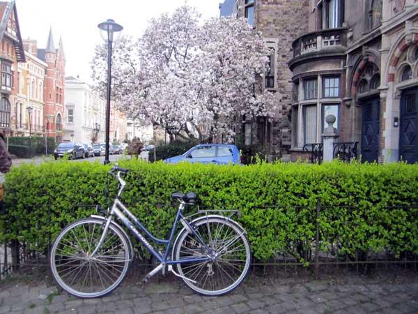 Anversa Finadre