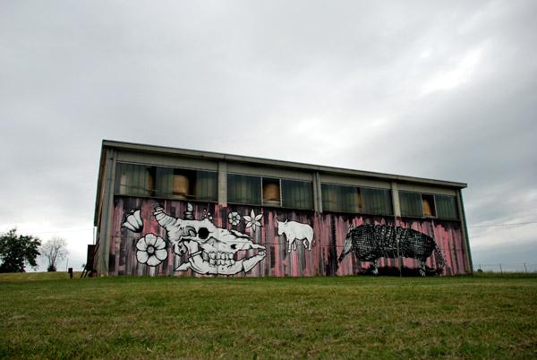 street art reggio emilia