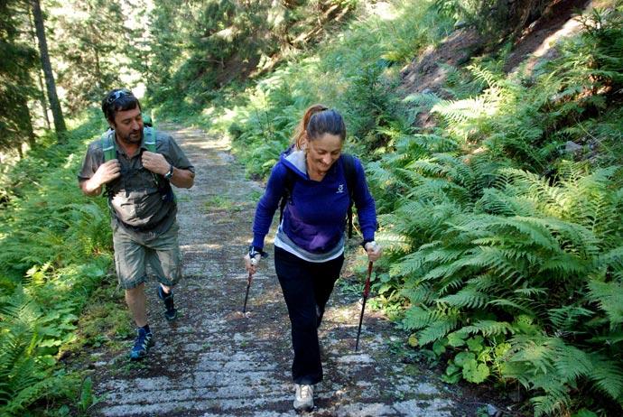 Nordicwalking in Trentino