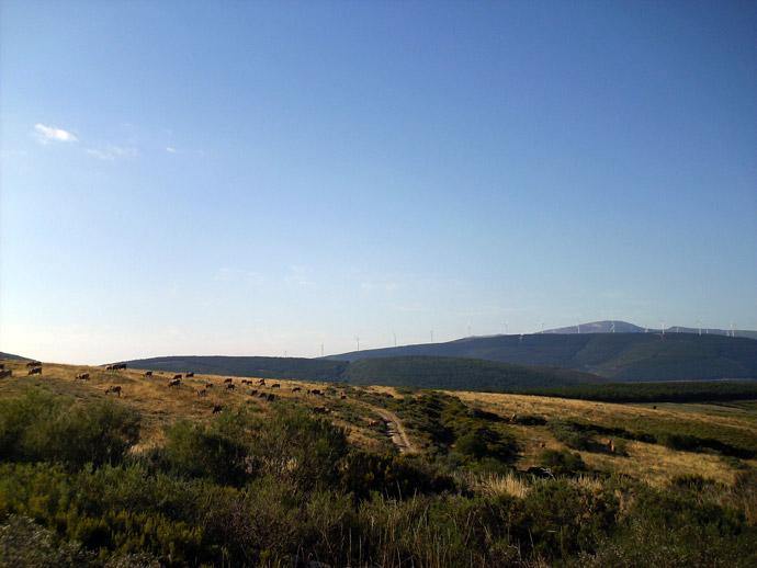 Monte Irago