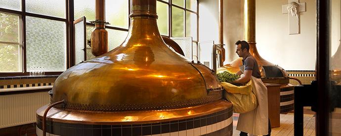 Fiandre e birra