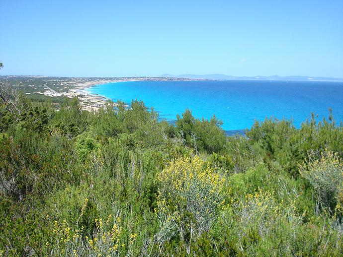 viaggio a Formentera