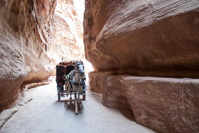 visitare Petra
