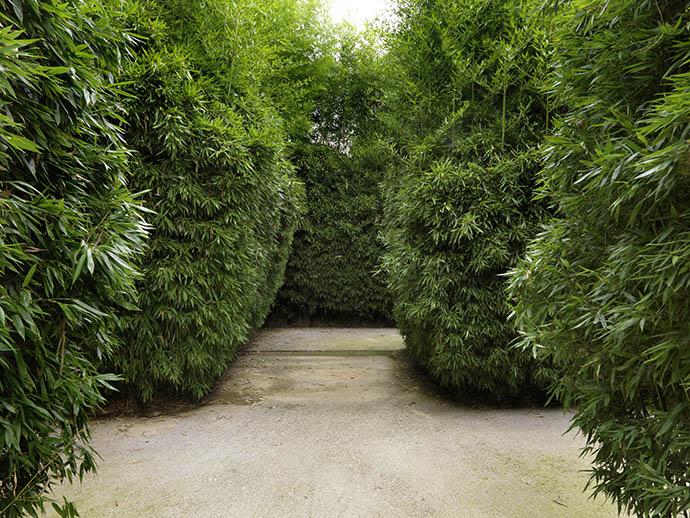 Labirinto Parma