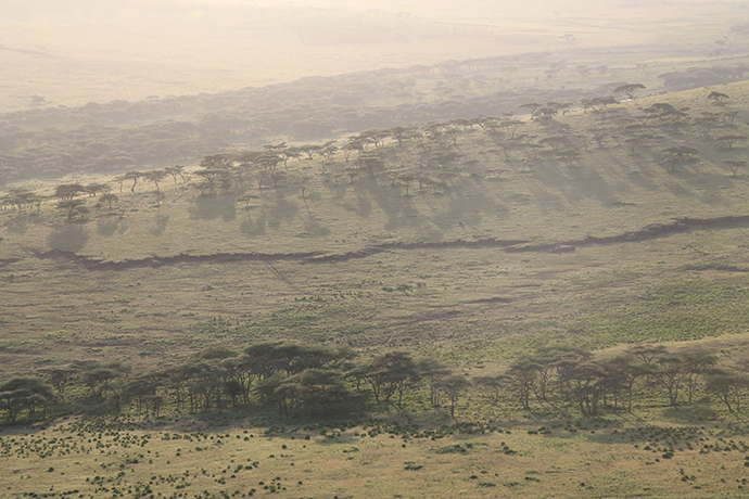 viaggio in Tanzania nella natura selvaggia