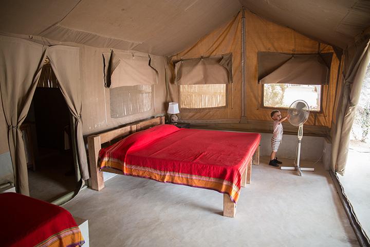 safari in Kenya Galana conservancy