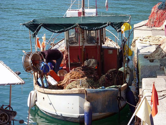 Isola d'Elba cosa visitare in tre giorni