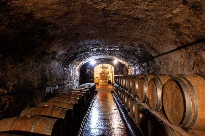Peccioli vini Tenuta Ghizzano