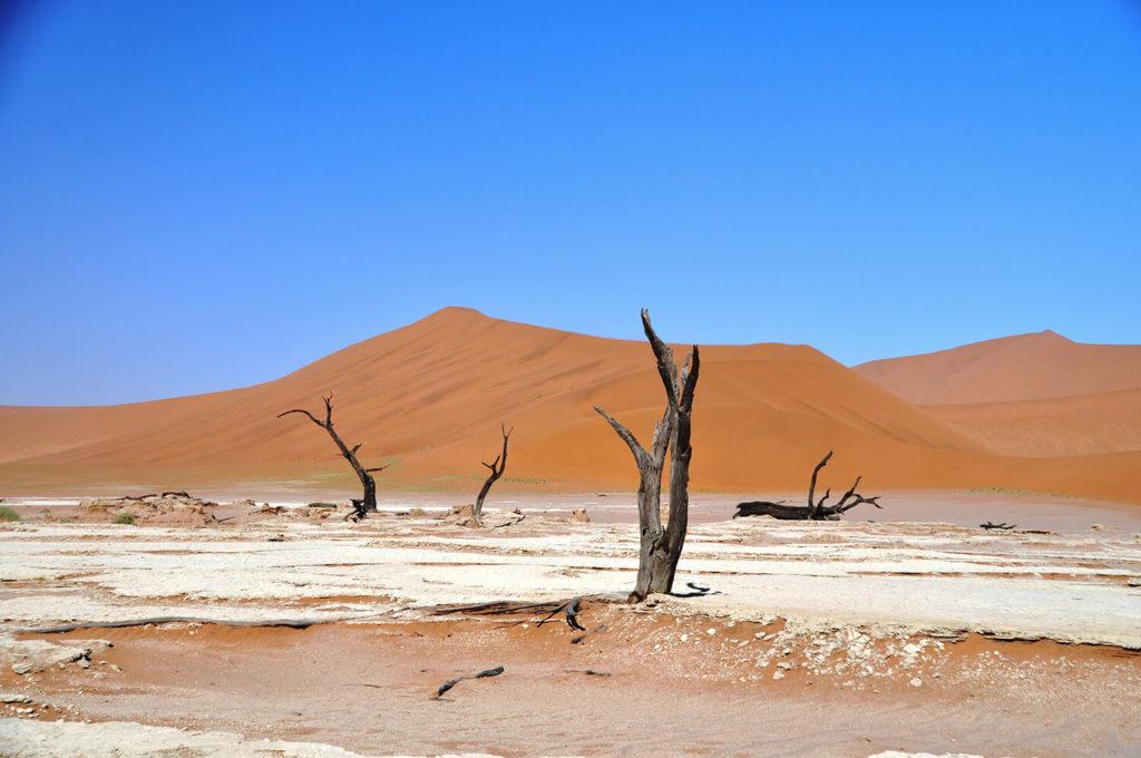 viaggio in Namibia